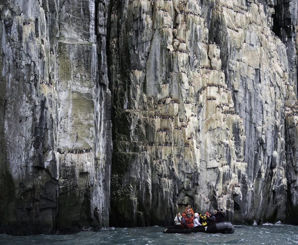 Découverte des falaises d'Alkefjellet