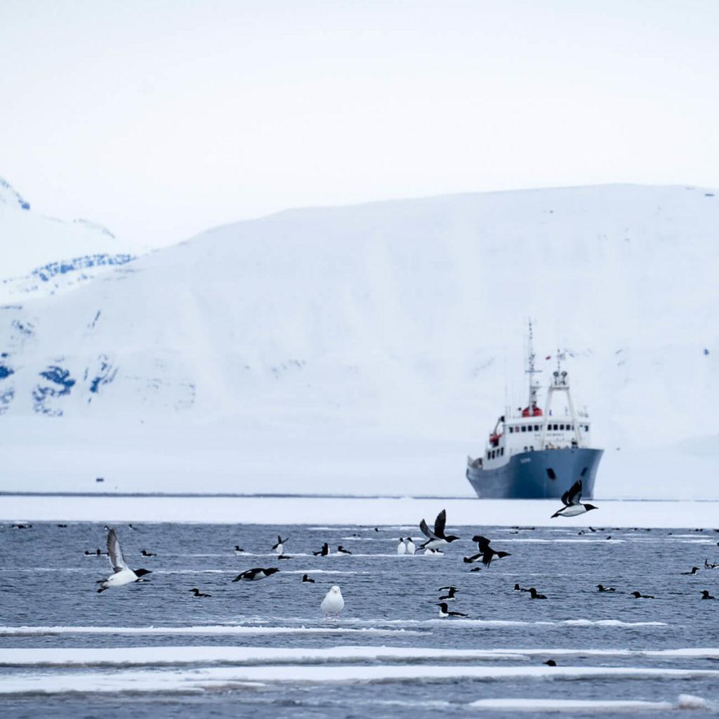 Croisière Polarfront - Croisière Spitzberg à bord du Polarfront