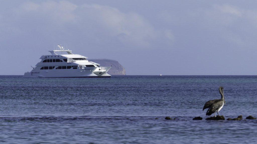 Grands Espaces - Galapagos