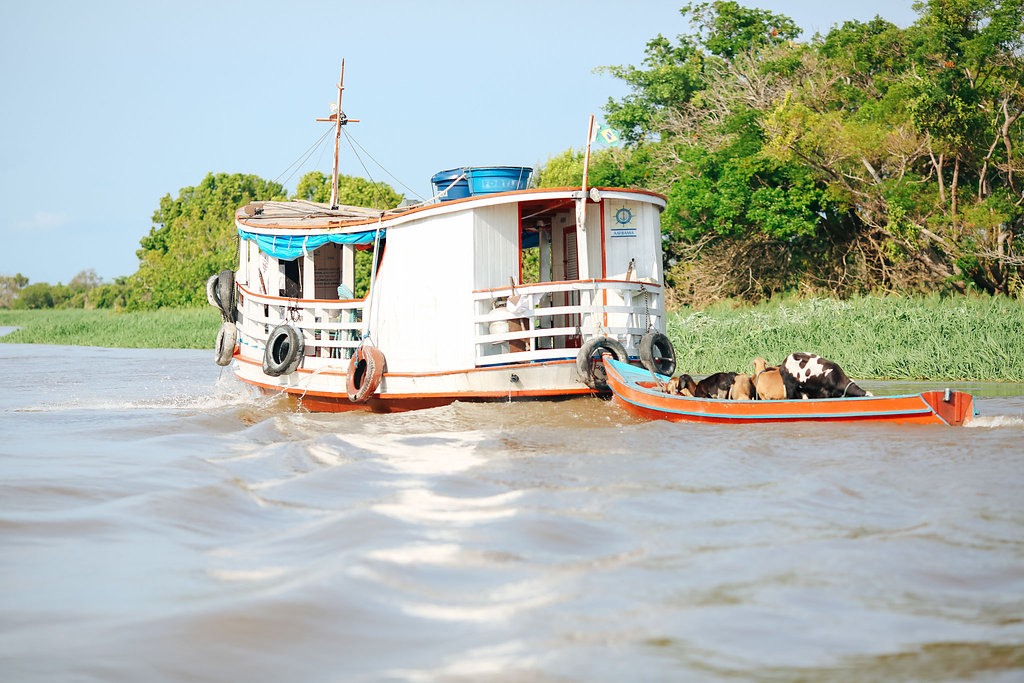 Grands Espaces - Amazonie