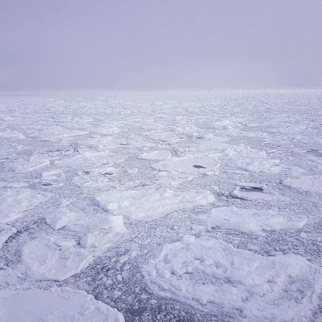 Croisière polaire banquise