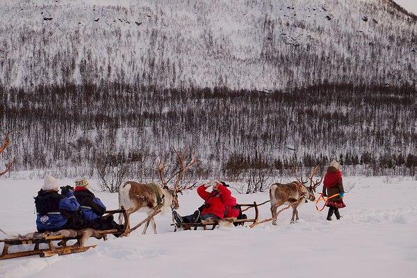 Grands Espaces - Laponie Norvégienne