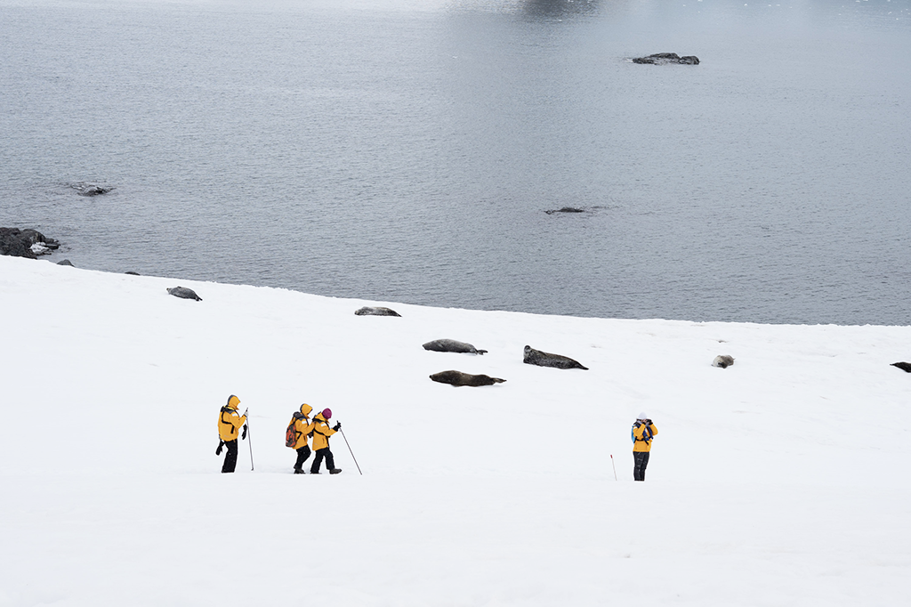 marche sur la banquise antarctique