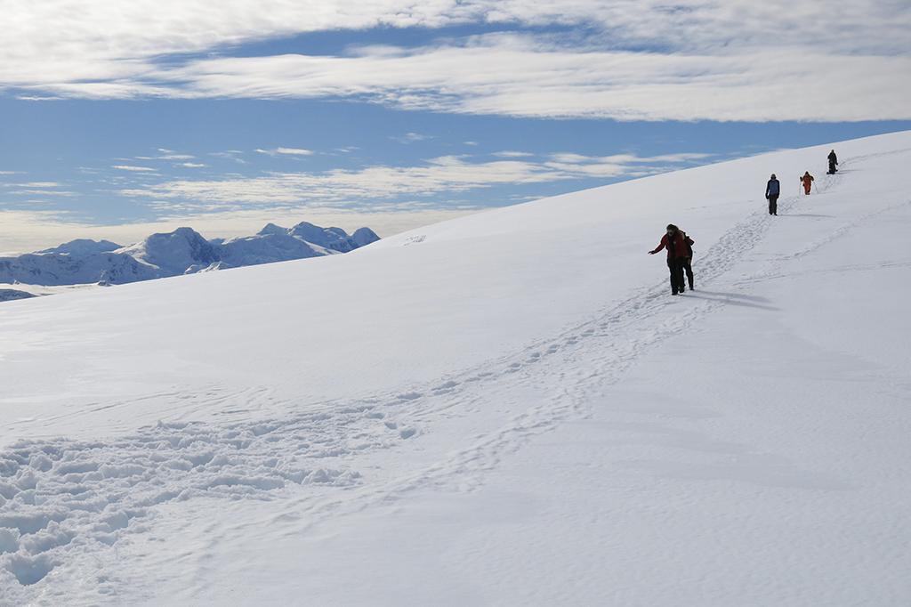 Promenade front glaciaire antarctique