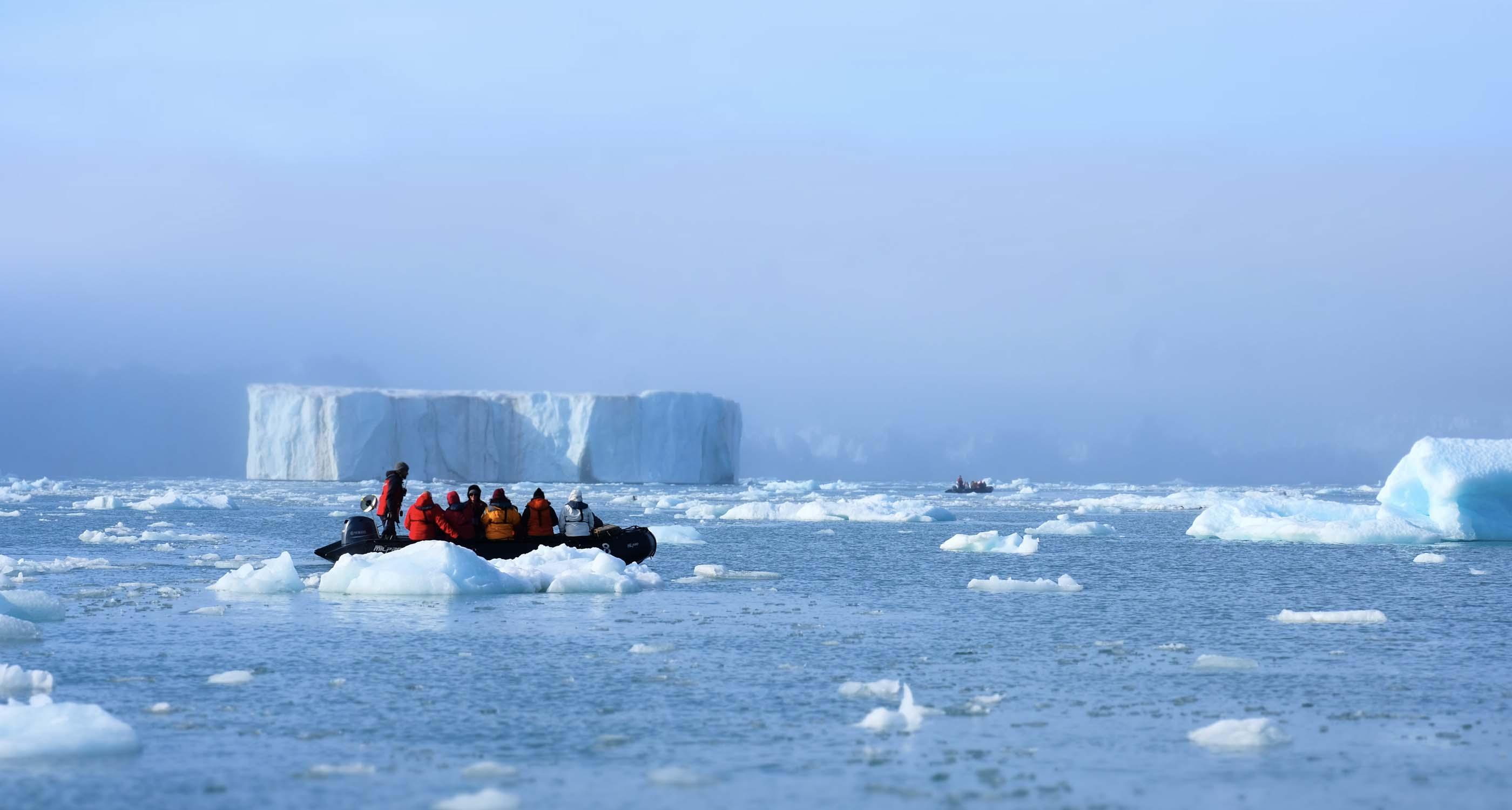 Icebergs Negribreen