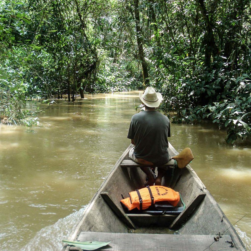 Balade Pirogue Amazonie