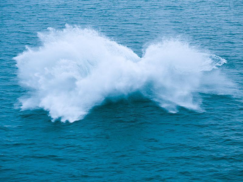 Baleine à bosse Liefdefjorden 2