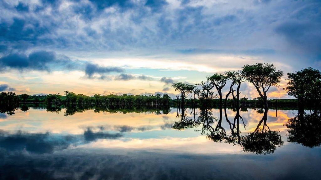 Croisière Amazonie