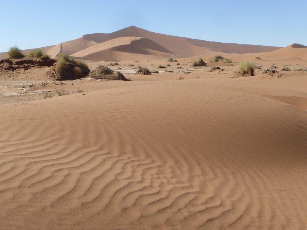 Circuit Afrique dune