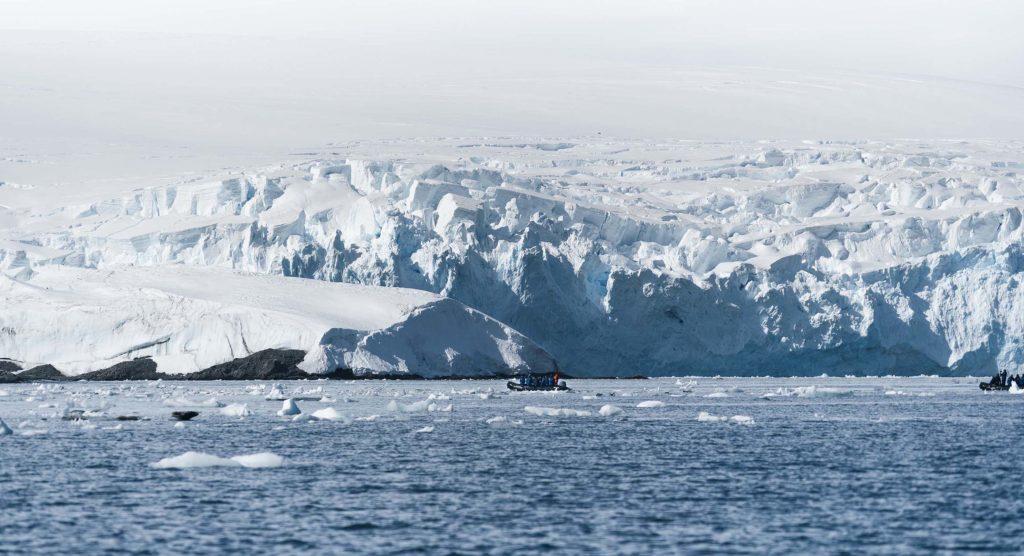 Croisière Antarctique - Sortie Zodiac