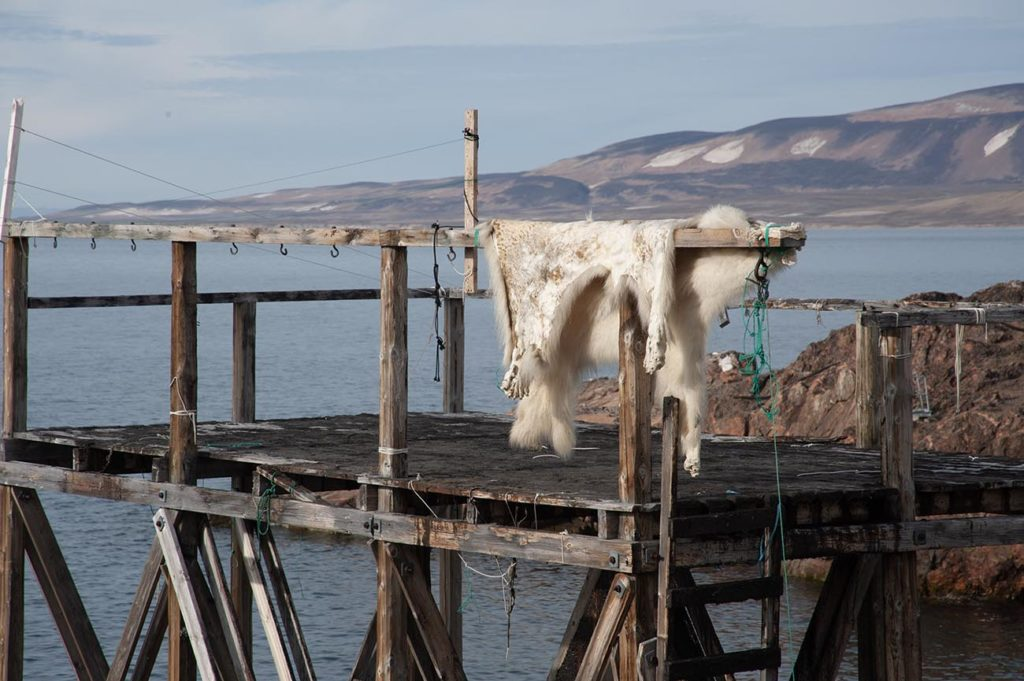 Découverte des spécialités culinaires des Inuits de Groenland