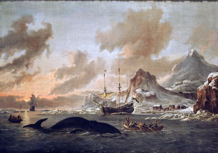 Chasse baleine