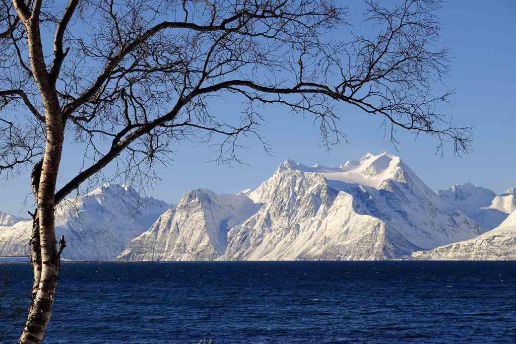 Alpes Lyngen - Croisière Laponie