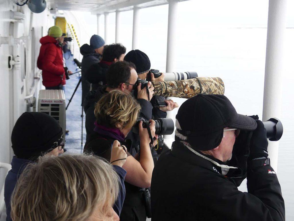 Atelier photo - Croisière polaire