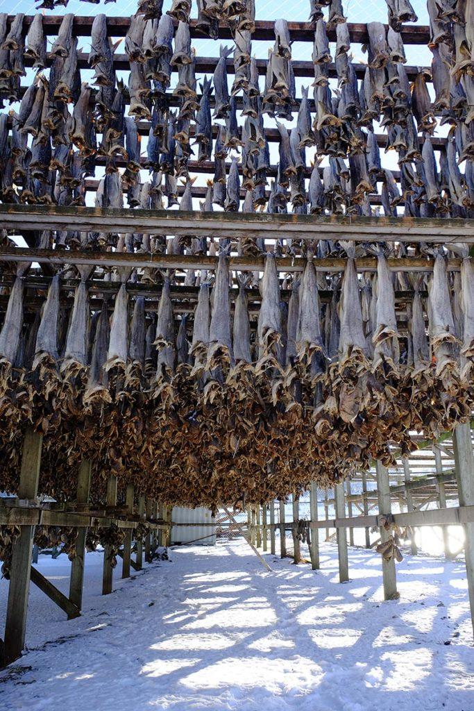 Séchoir à poisson - Croisière en Laponie