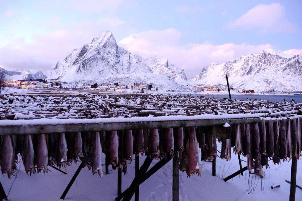 Pêcherie - Croisière en Laponie