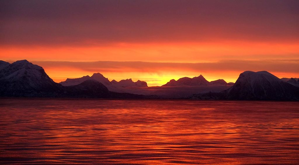 Vestfjord - Croisière en Laponie