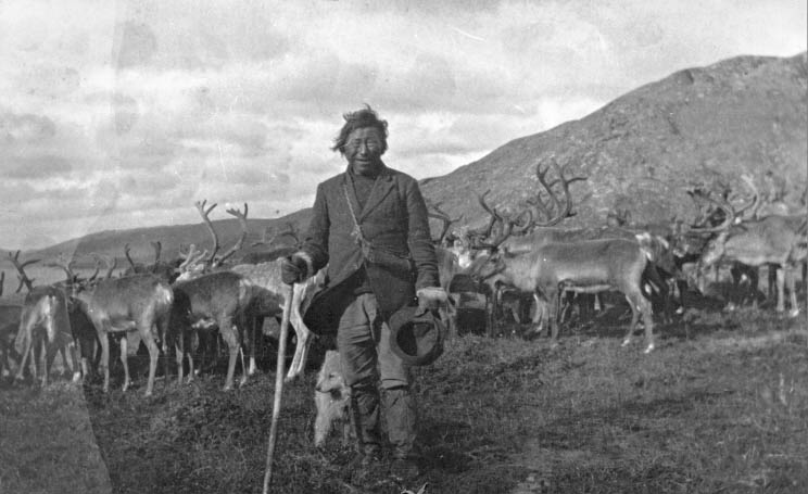 Inuit avec troupeau de renne
