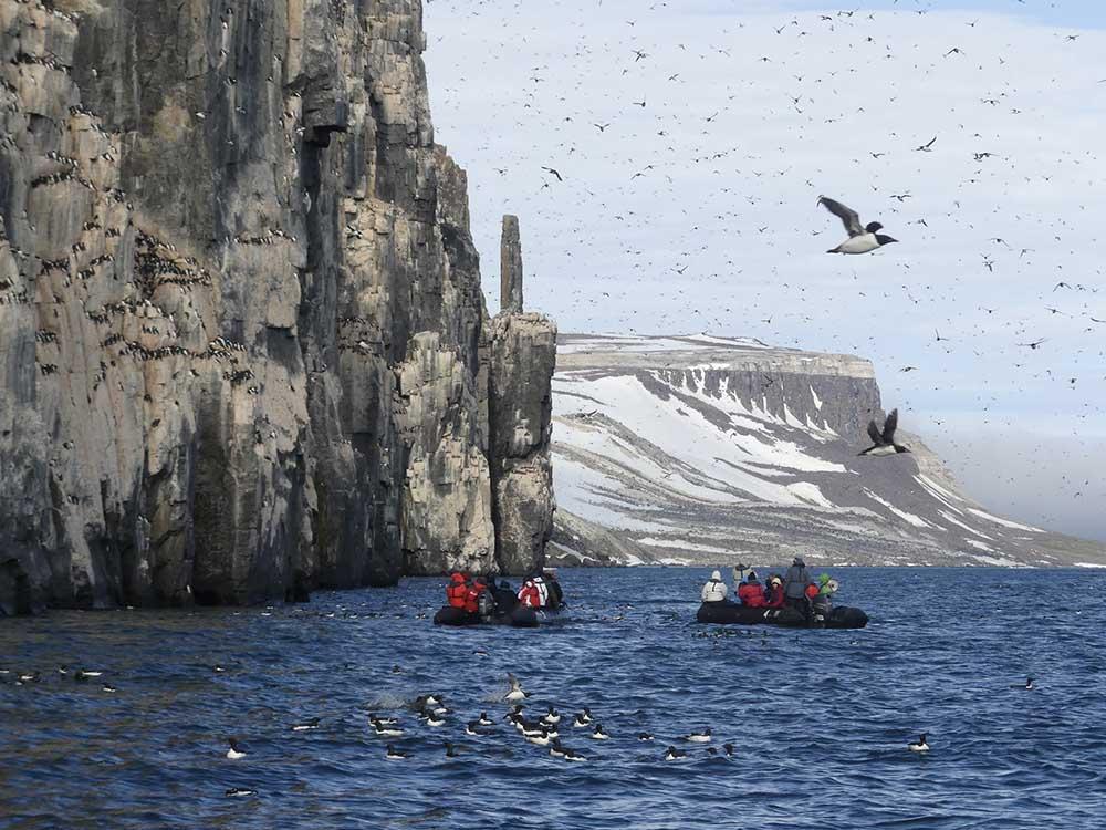 Alkefjellet Spitzberg