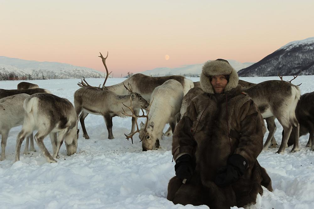 Sami éleveur de rennes